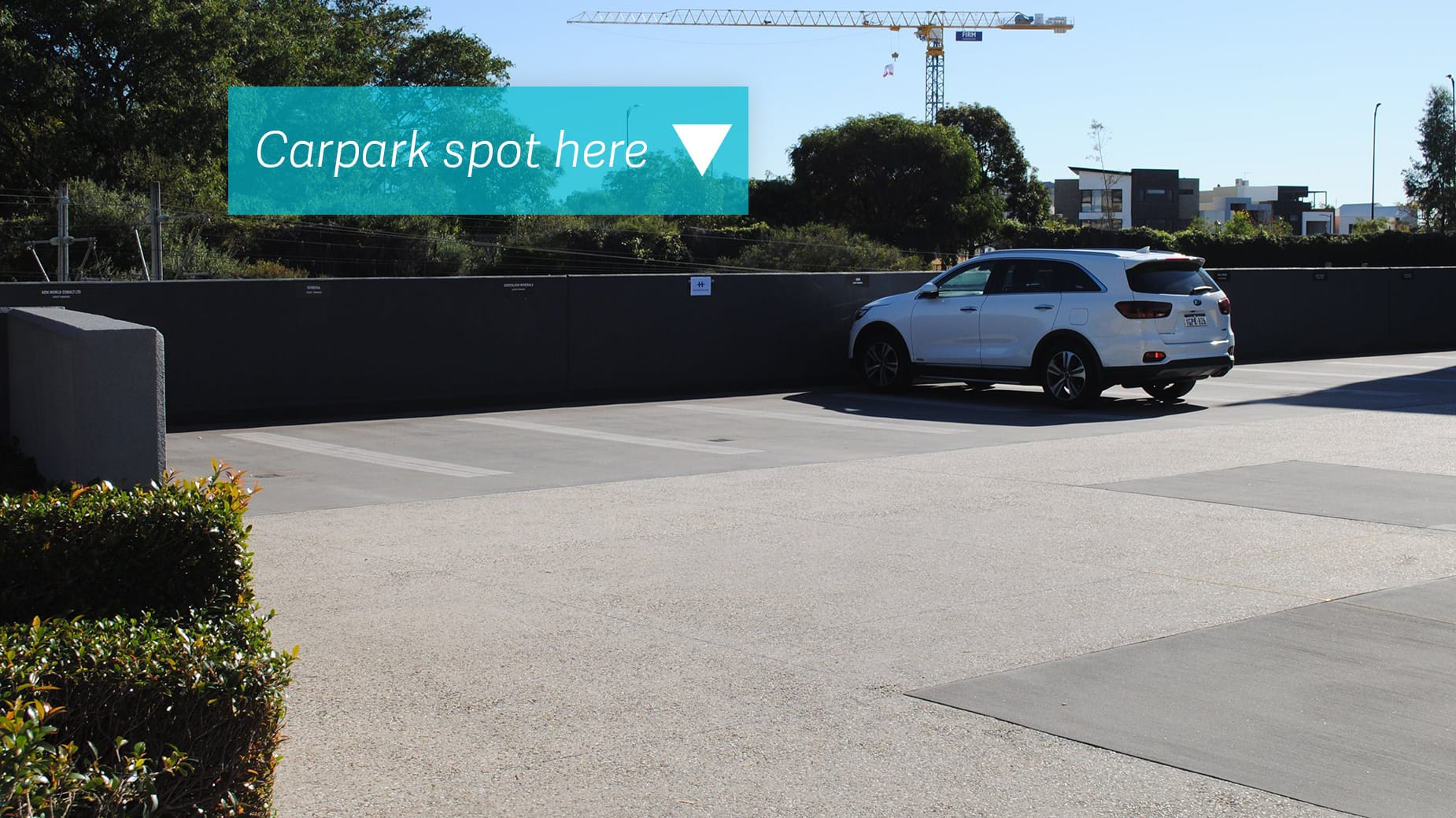 carpark-spot-here